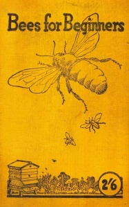 bees for beginners
