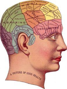 Vintage Phrenology: thegraphicsfairy.com