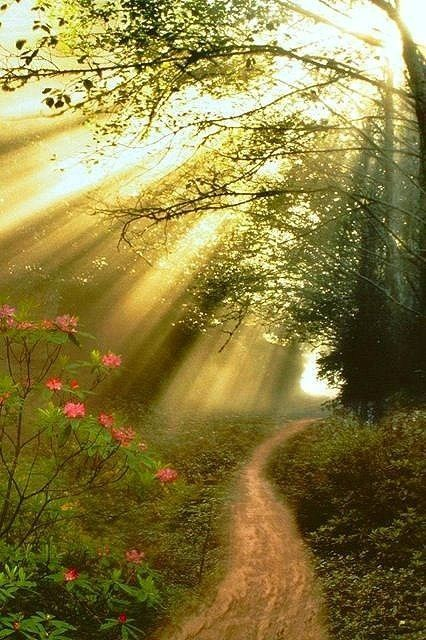 path lit