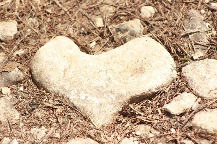 heart-stone