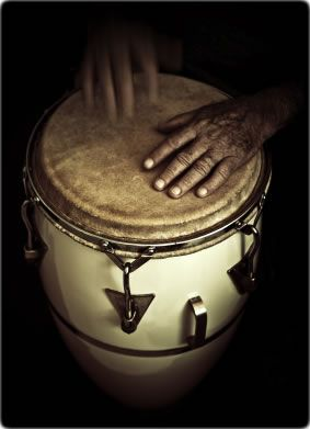 hands on drum Vito Perrini