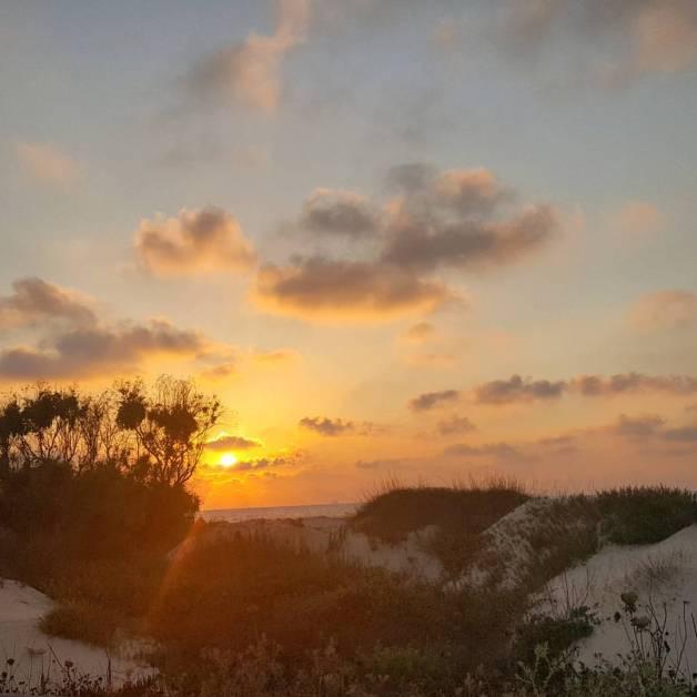 InbarAsif dunes