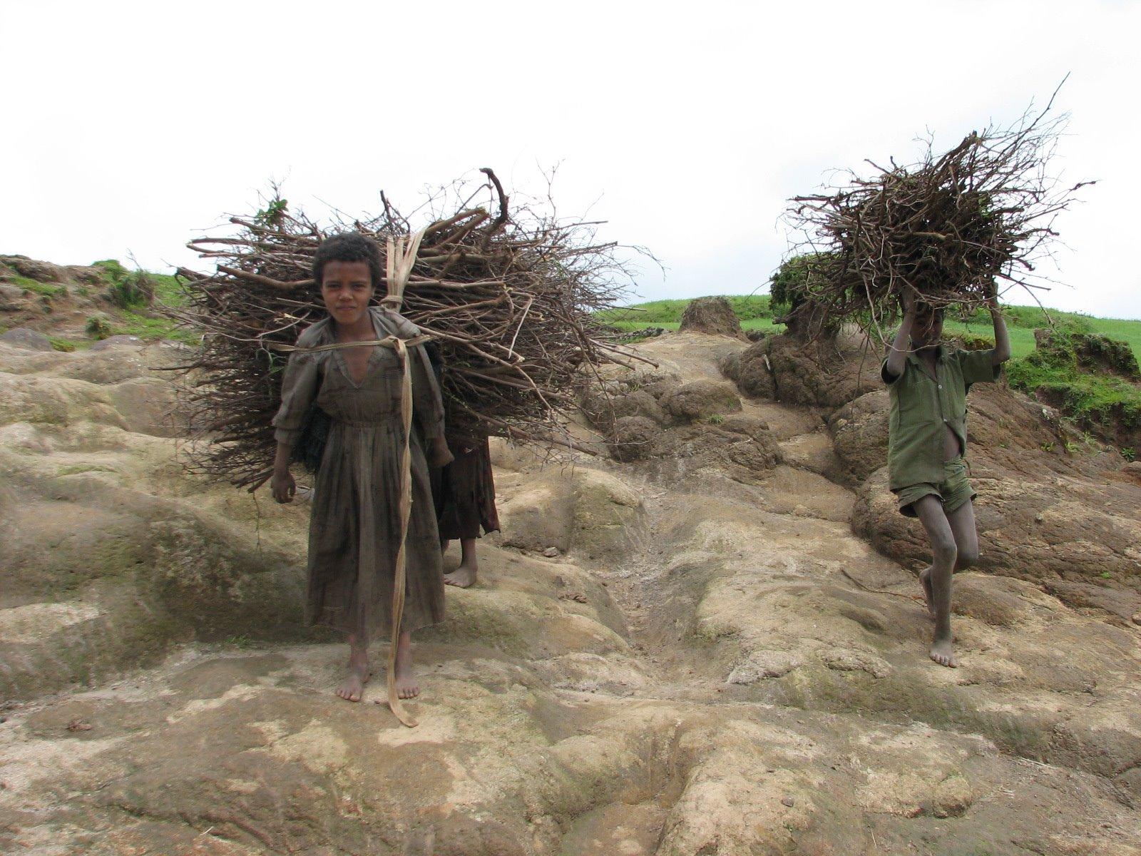 Ethiopia6 DvoraFreedman