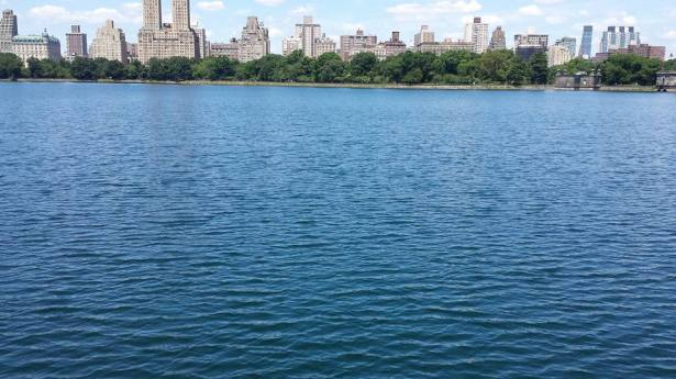 Central Park Reservior NaamaYehuda