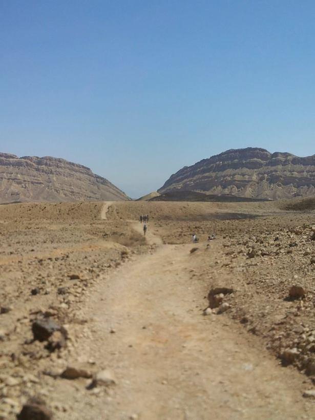desert walk AmitaiAsif