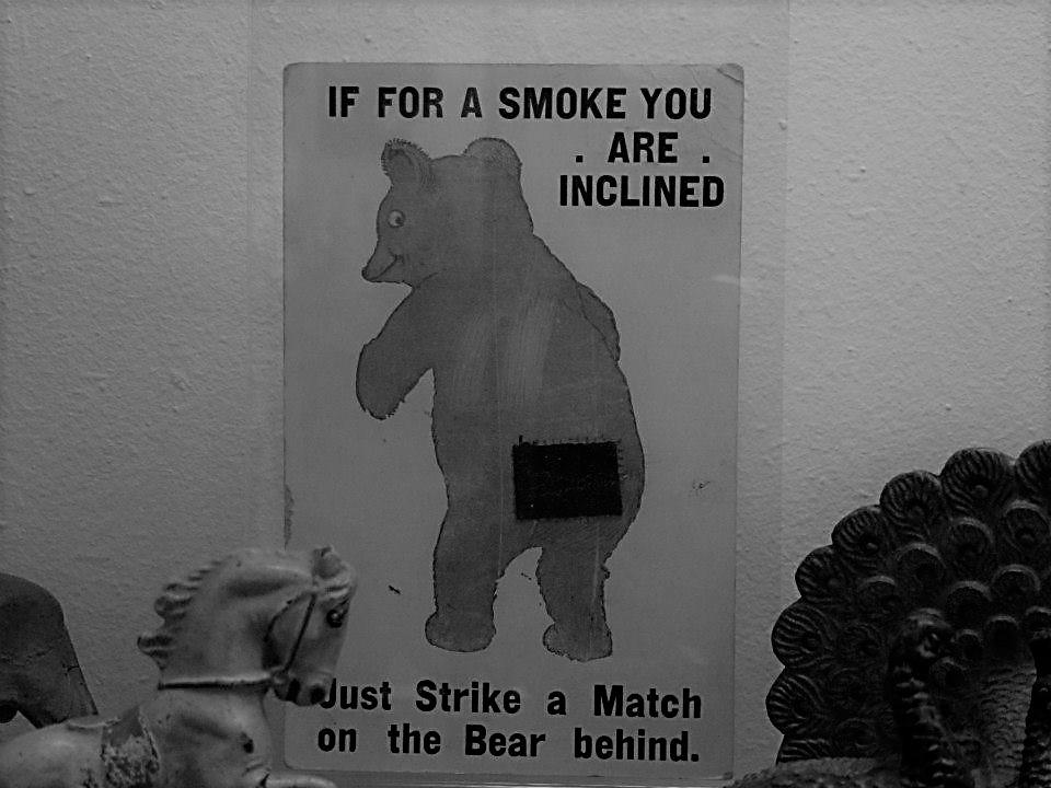 Not smokey bear SmadarHalperinEpshtein (2)