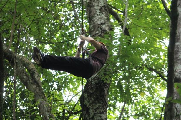 Flight of the Gibbon, Chiang Mai, Thailand