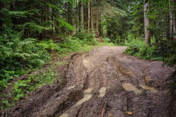 muddy tracks chagit moriahgibor