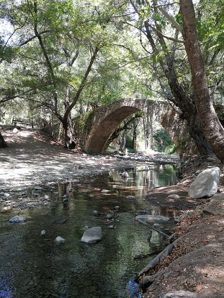bridge over quiet water SmadarHalperinEpshtein