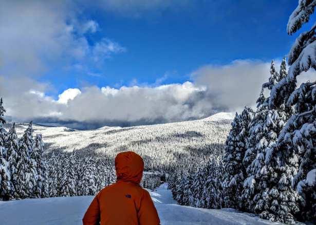 snow view KarenForte