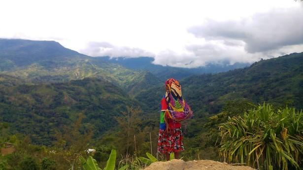 PNG view3 OfirASif 2