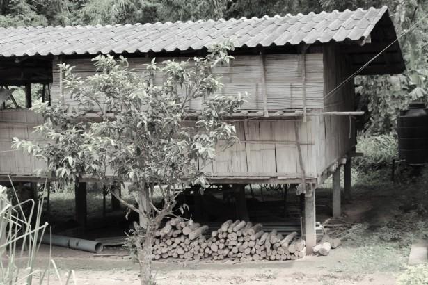 ChiangMai House AdiRozenZvi