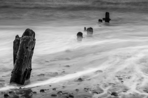 groynes-2779479_1920 TimHill on Pixabay