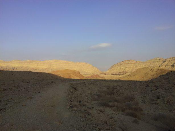 shadow path OfirAsif