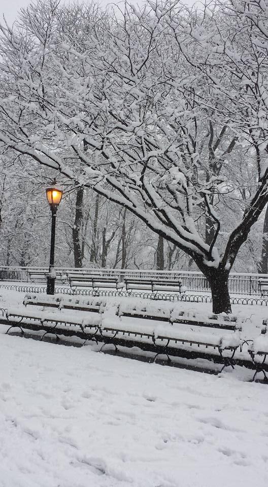 April Snow NaamaYehuda