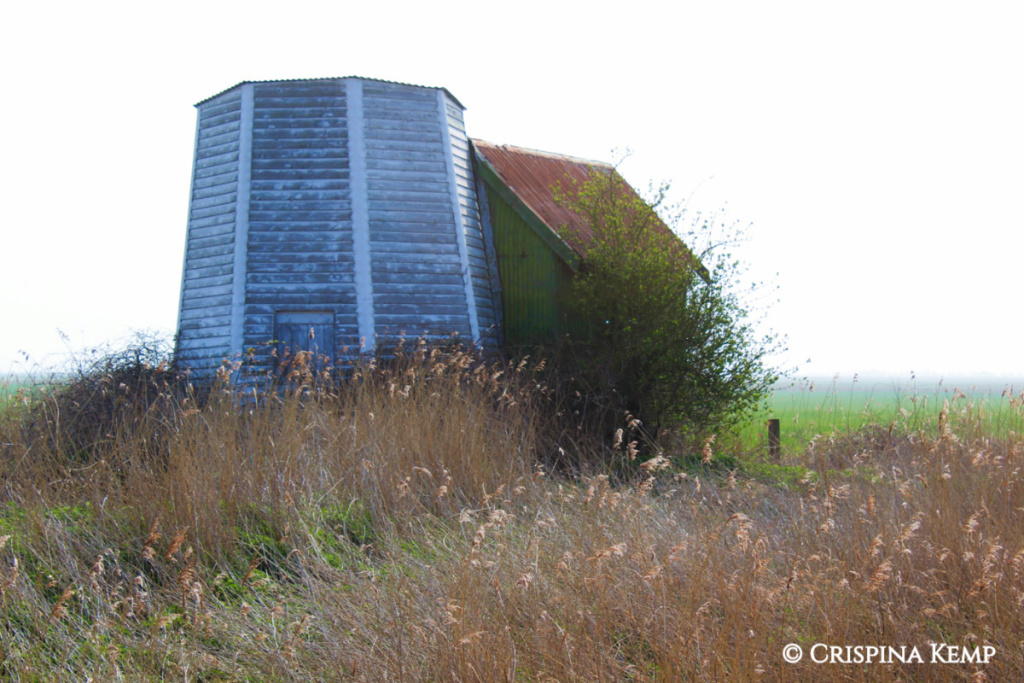 whitewashed-mill-in-mist-cp CrispinaKemp