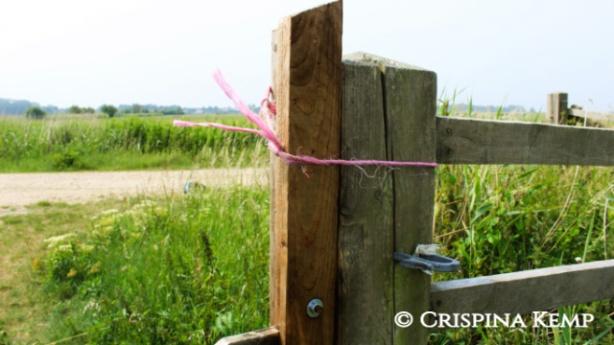 gatepost CrispinaKemp